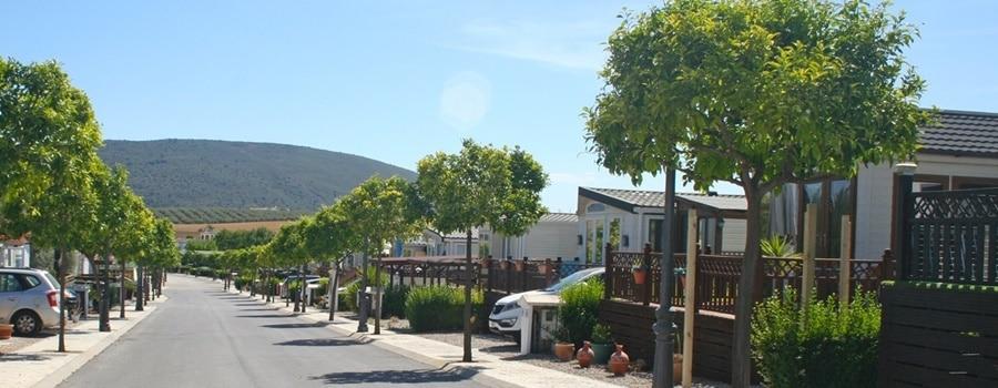 Street in Park La Posada